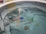Plavání - jaro 2019