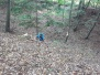 Vycházka v lese, září 2020